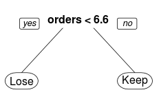 Using Decision Trees to Predict Keeping or Losing Customers